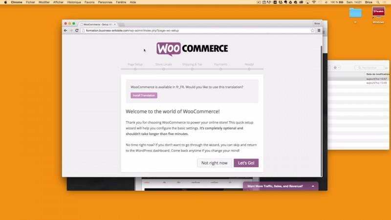 Installation de WooCommerce sans thème