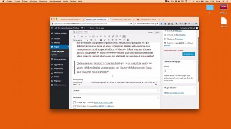 Présentation de l'éditeur de texte de WordPress ?
