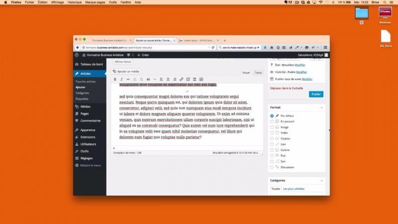 Présentation des articles WordPress